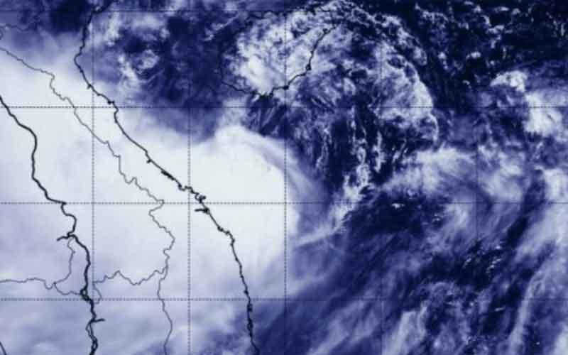 Polonic-storm-and-Kajiki-news-site
